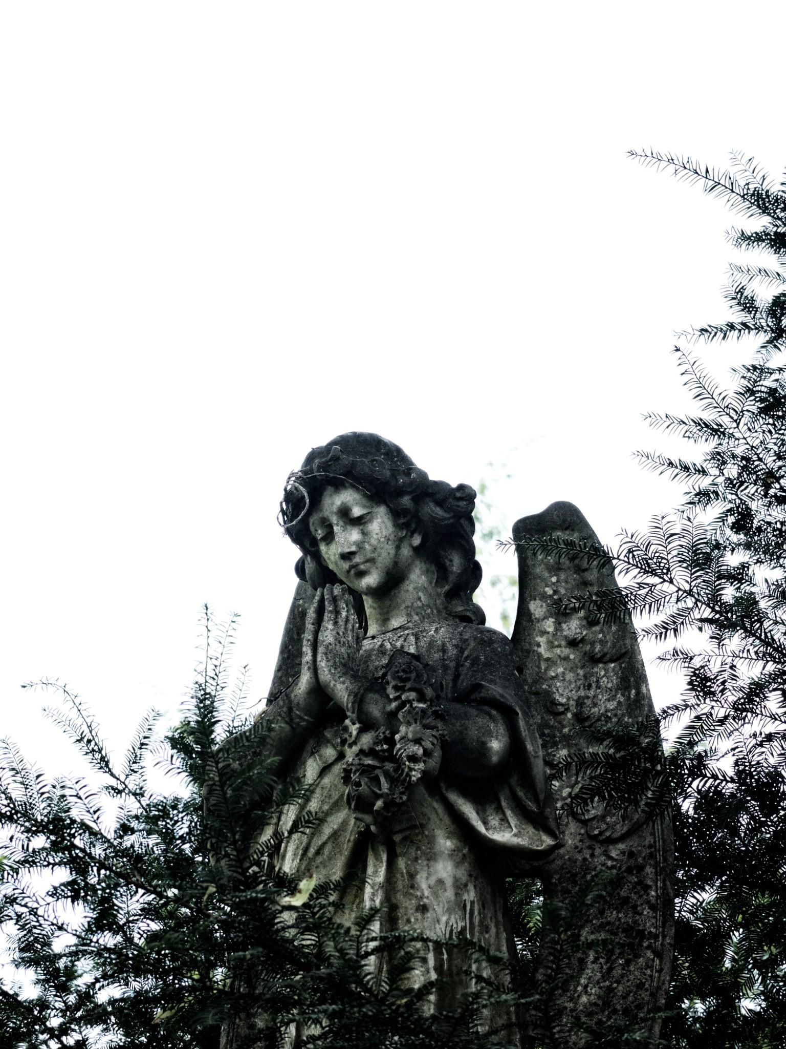 Main Cemetery Frankfurt